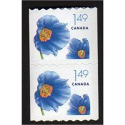 #2131var XF-NH COIL PAIR (ROSE SHADE ON FLOWER VARIETY ERROR)