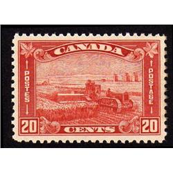 #175 XF-NH PERFECTION CAT$120.00