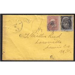 USA #65 + 73 ON SCARCE COVER