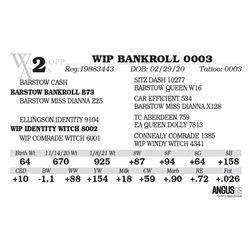 WIP BANKROLL 0003