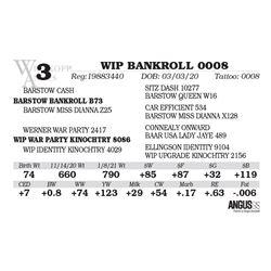 WIP BANKROLL 0008