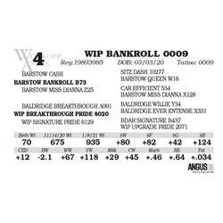 WIP BANKROLL 0009