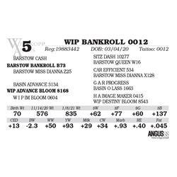 WIP BANKROLL 0012