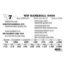 WIP BANKROLL 0030
