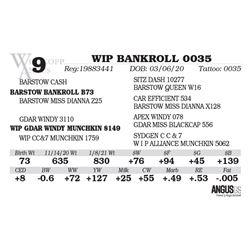 WIP BANKROLL 0035