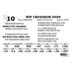 WIP CROSSBOW 0039