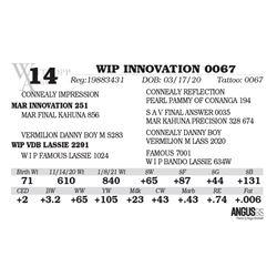 WIP INNOVATION 0067