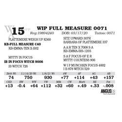 WIP FULL MEASURE 0071