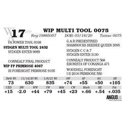 WIP MULTI TOOL 0075