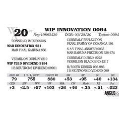 WIP INNOVATION 0094