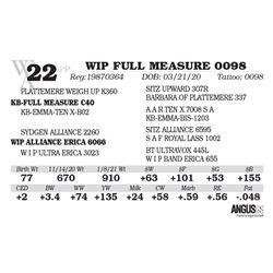 WIP FULL MEASURE 0098