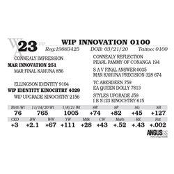 WIP INNOVATION 0100