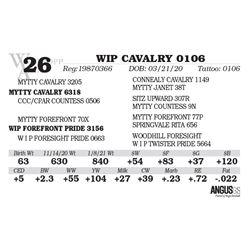 WIP CAVALRY 0106