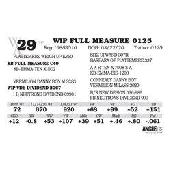 WIP FULL MEASURE 0125
