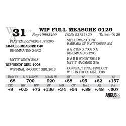 WIP FULL MEASURE 0129
