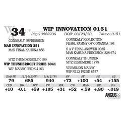 WIP INNOVATION 0151