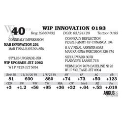 WIP INNOVATION 0183