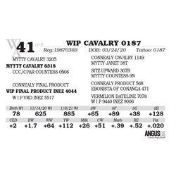 WIP CAVALRY 0187