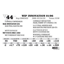WIP INNOVATION 0196