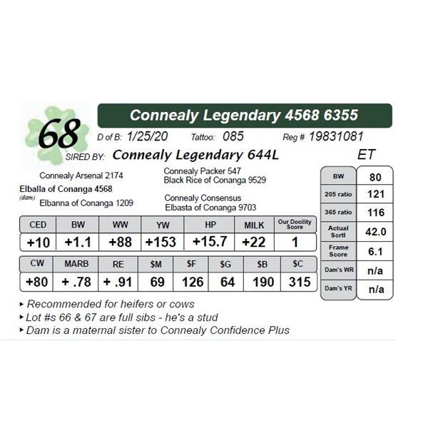 Connealy Legendary 4568 6355