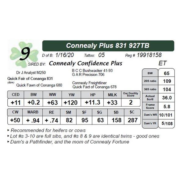 Connealy Plus 831 927TB