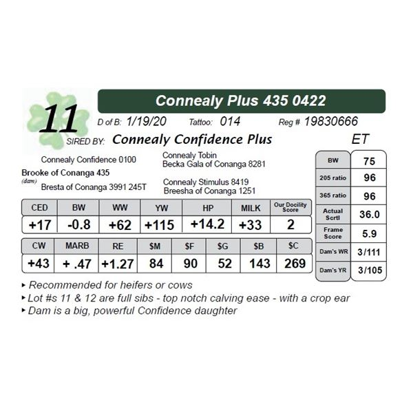 Connealy Plus 435 0422