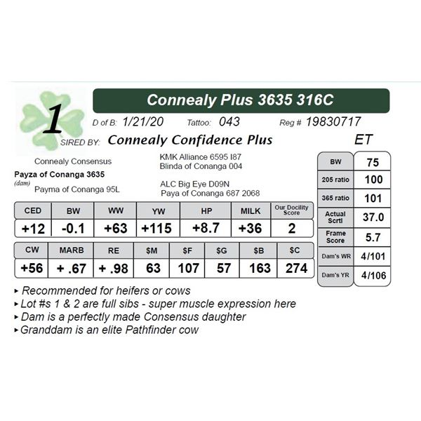 Connealy Plus 3635 316C