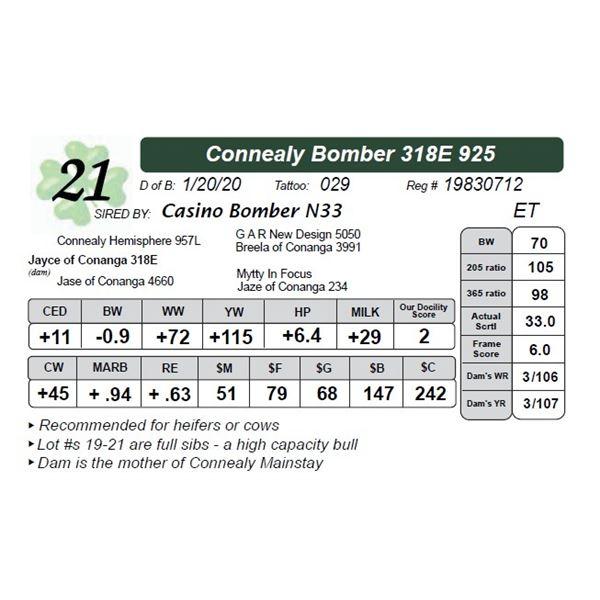 Connealy Bomber 318E 925
