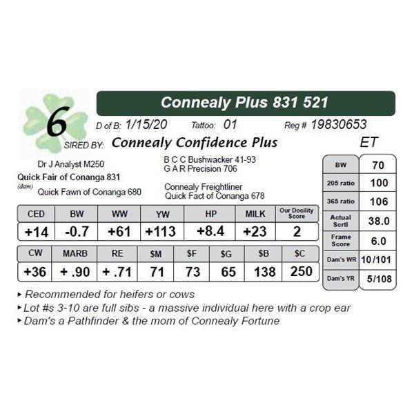 Connealy Plus 831 521