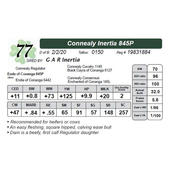 Connealy Inertia 845P