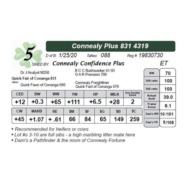 Connealy Plus 831 4319