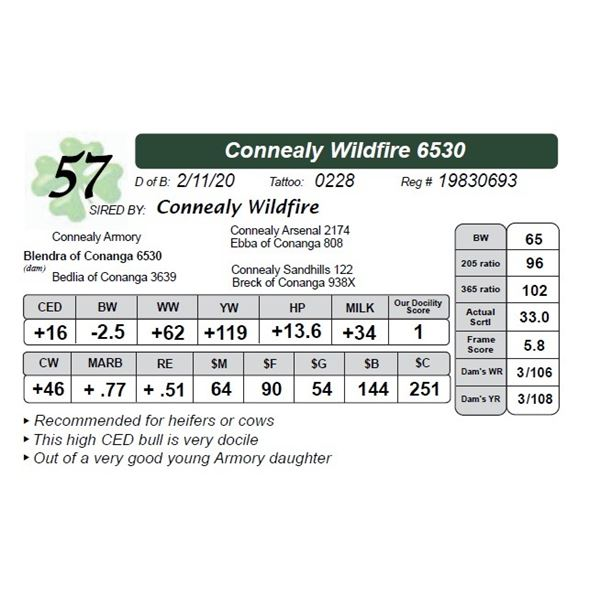Connealy Wildfire 6530