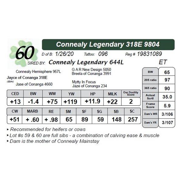 Connealy Legendary 318E 9804