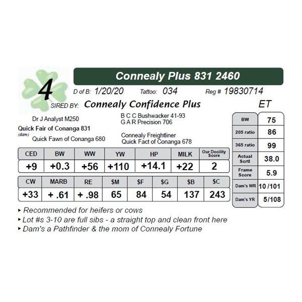 Connealy Plus 831 2460