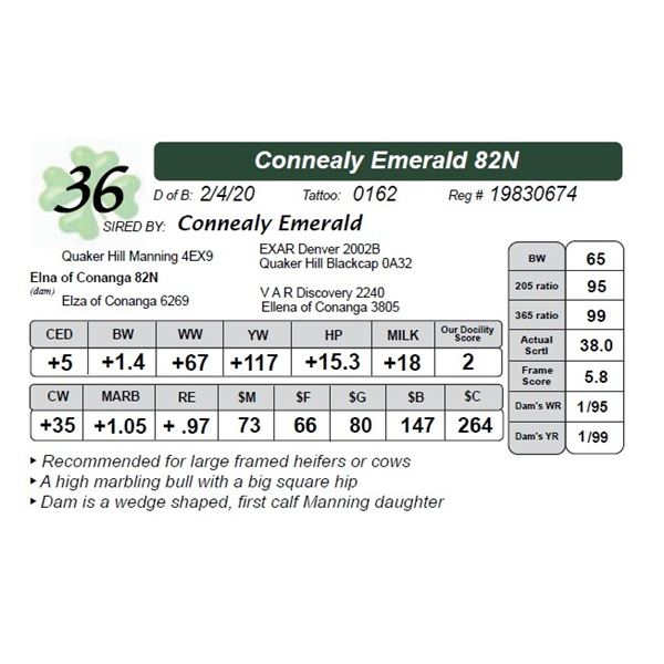 Connealy Emerald 82N