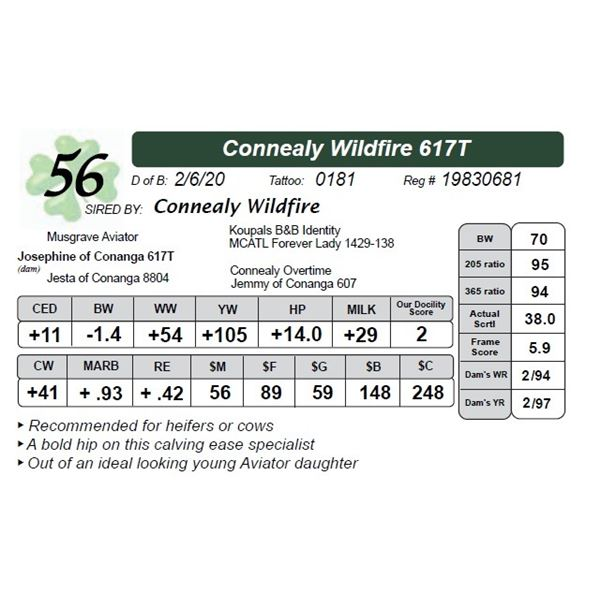 Connealy Wildfire 617T