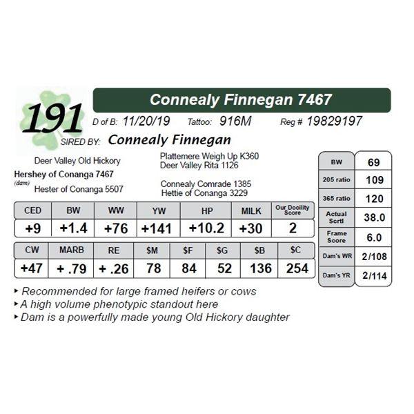 Connealy Finnegan 7467