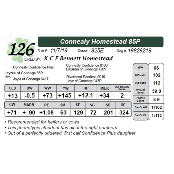 Connealy Homestead 85P