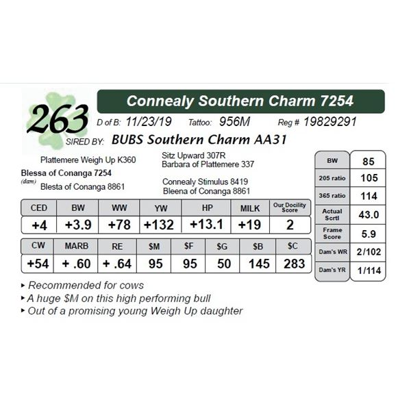 Connealy Southern Charm 7254