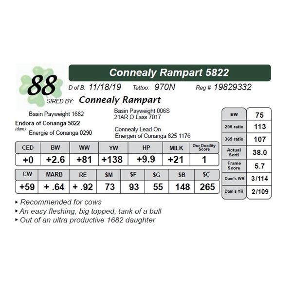 Connealy Rampart 5822