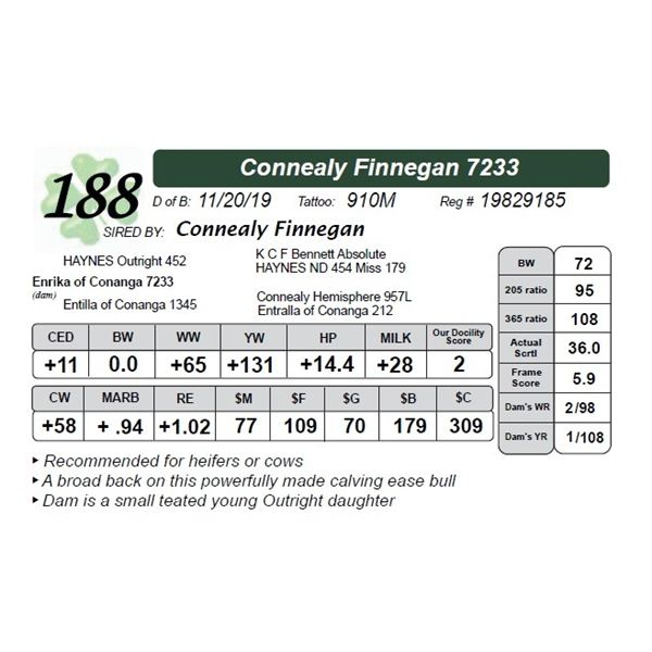 Connealy Finnegan 7233