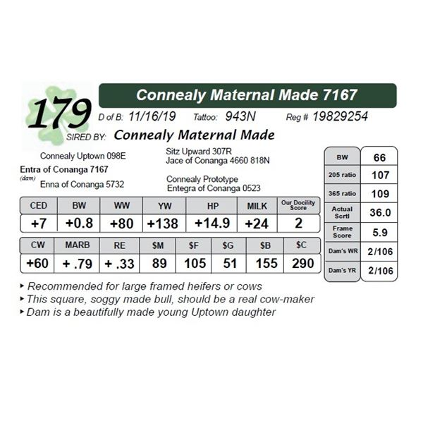 Connealy Maternal Made 7167