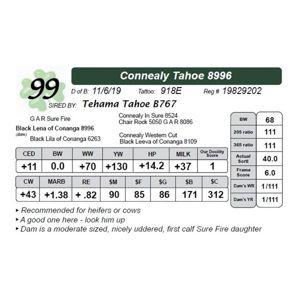 Connealy Tahoe 8996