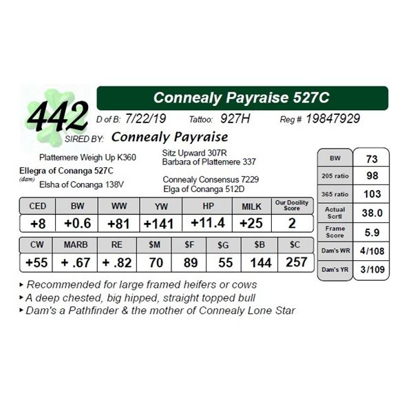 Connealy Payraise 527C