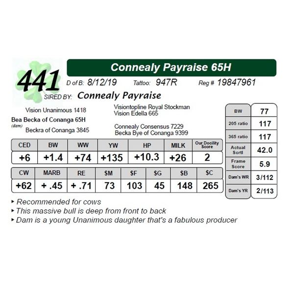 Connealy Payraise 65H