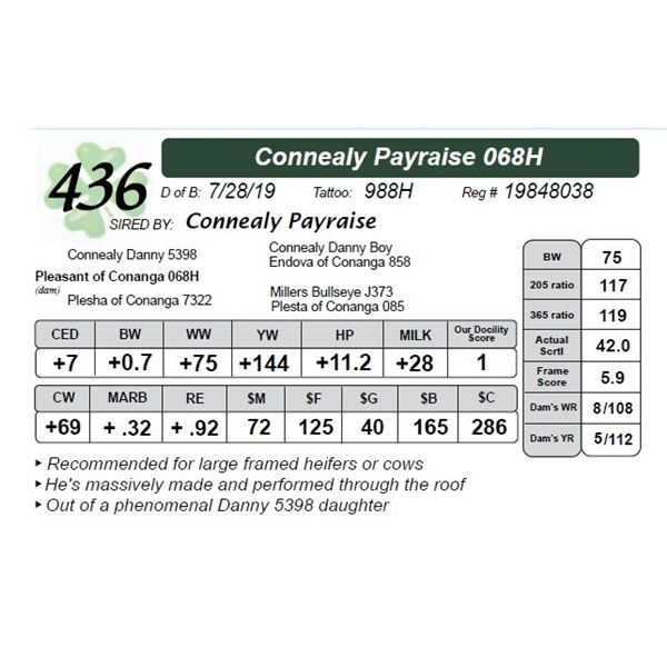 Connealy Payraise 068H
