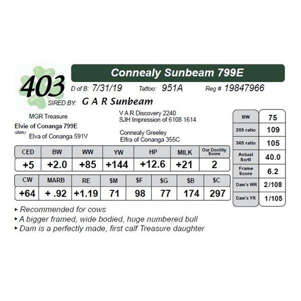 Connealy Sunbeam 799E