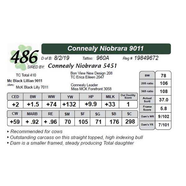 Connealy Niobrara 9011