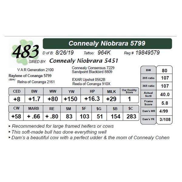 Connealy Niobrara 5799
