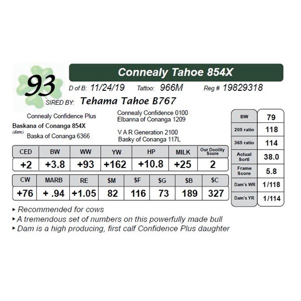 Connealy Tahoe 854X